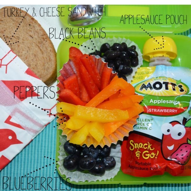 lunch boxes for school