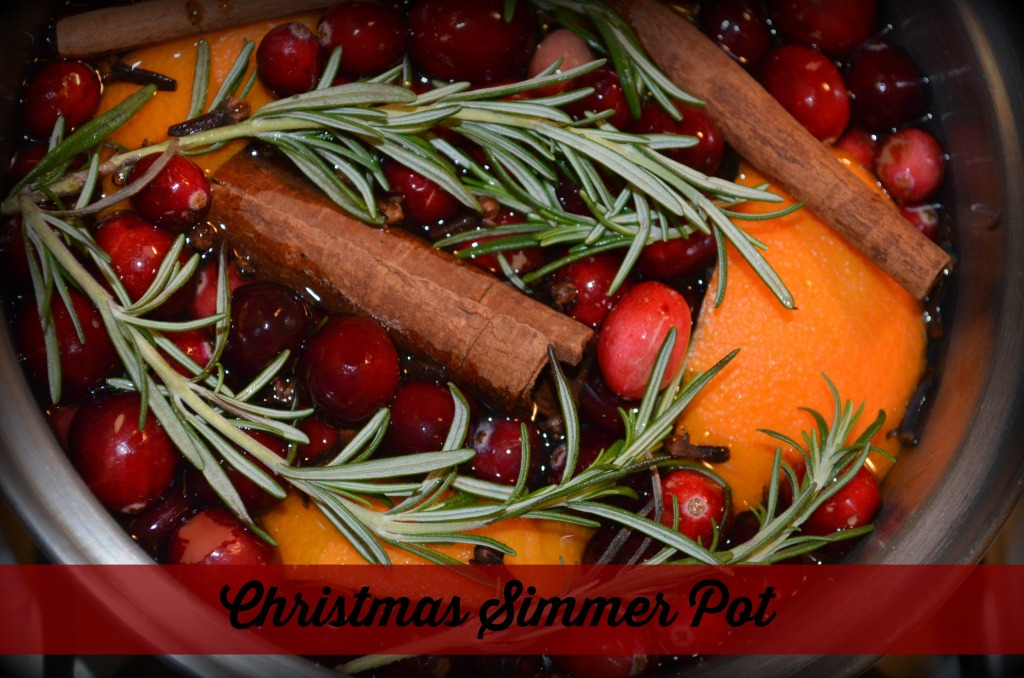 Christmas stove top simmer pot recipe