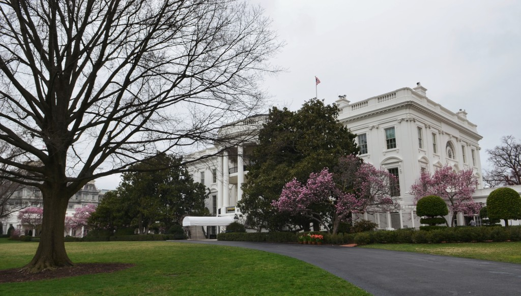 the-White-House-Side-View