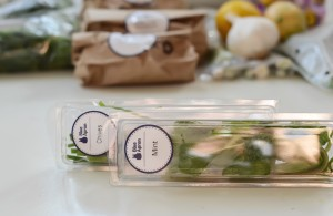 Blue-Apron-Meal-Delivery-Ingredients-Recipes