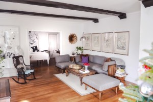 living-room-home-design-tips-raymour-flanigan