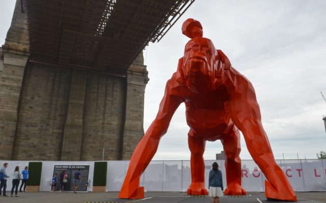 Protect Like a Mother Installation Comes to Brooklyn