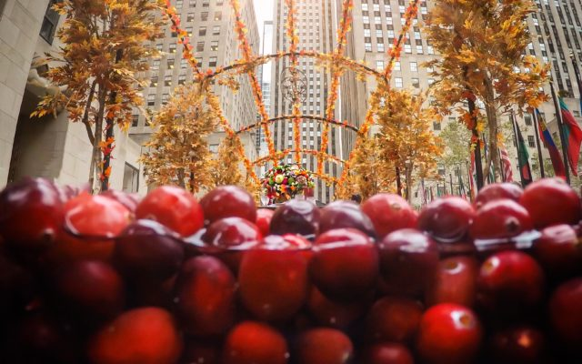 Grandma Knows Best: CranMa's Thanksgiving Hostess Tips & a Trip to Ocean Spray's Cranberry Bog