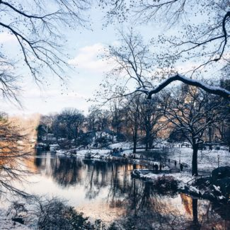 beautiful-central-park-snow