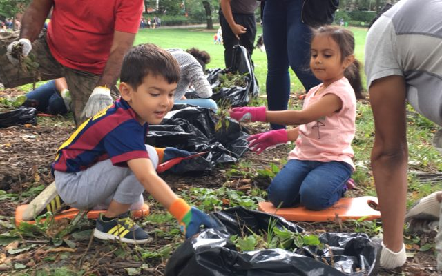 Volunteer Opportunities for Kids, Teens, and Families with The Central Park Conservancy